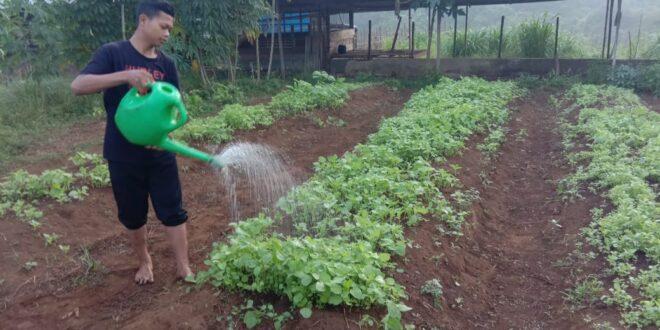 Santri Berkarya – Praktek Kebun -Tata boga dan Pertamanan