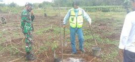 Program Penanaman Pohon Durian PT. Pama dan Kodim Bersama Santri Assalam