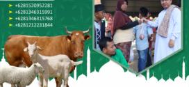 Program Qurban untuk santri dan muallaf di Kutai Barat